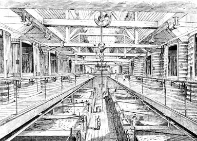 Fermentation hall Rogers's brewery Bristol about 1890