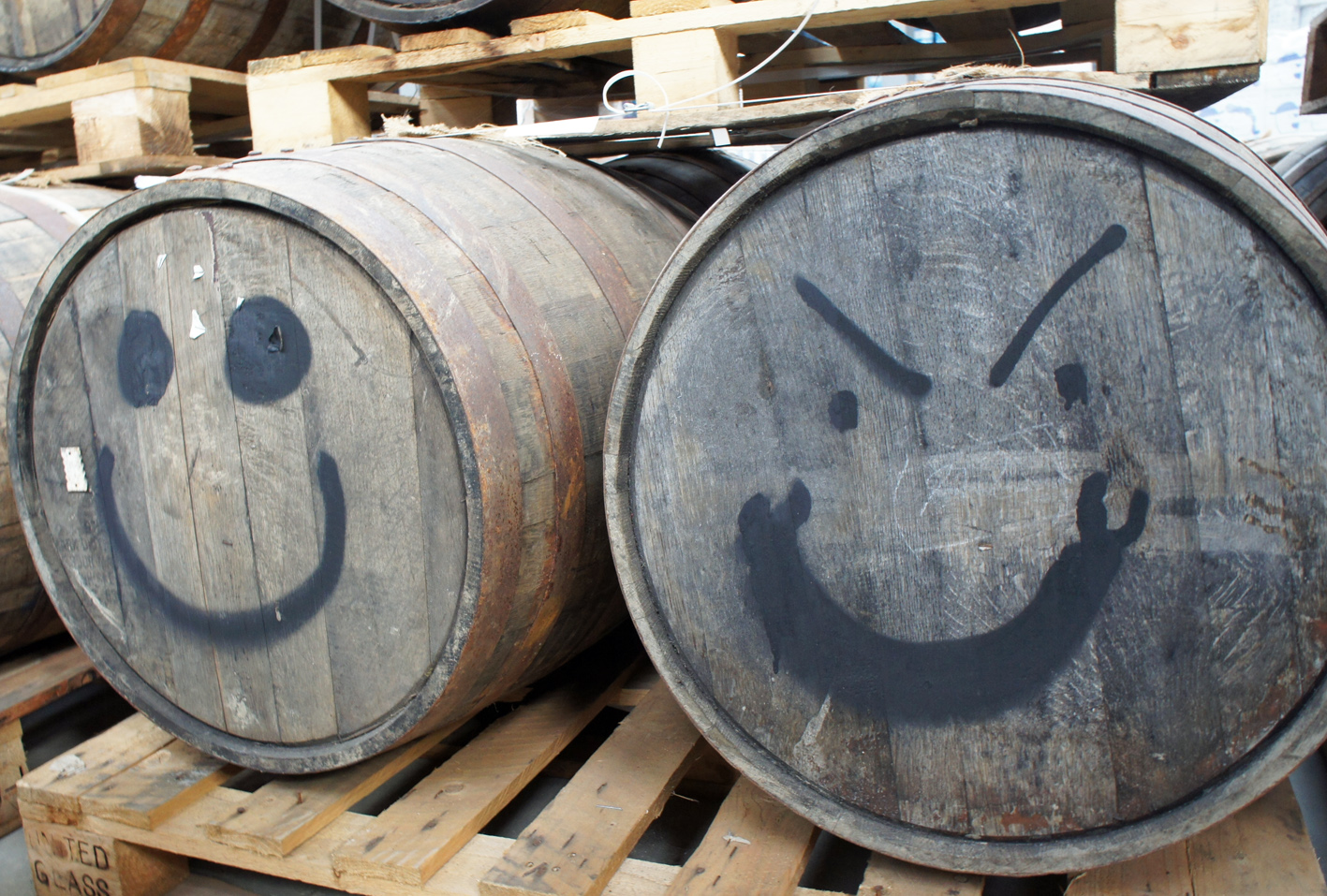 Two of dozens, at least, of former whisky, bourbon and rum casks at the brewery, filled with maturing beer