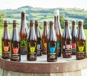 Wild Beer: reflecting the Somerset terroir